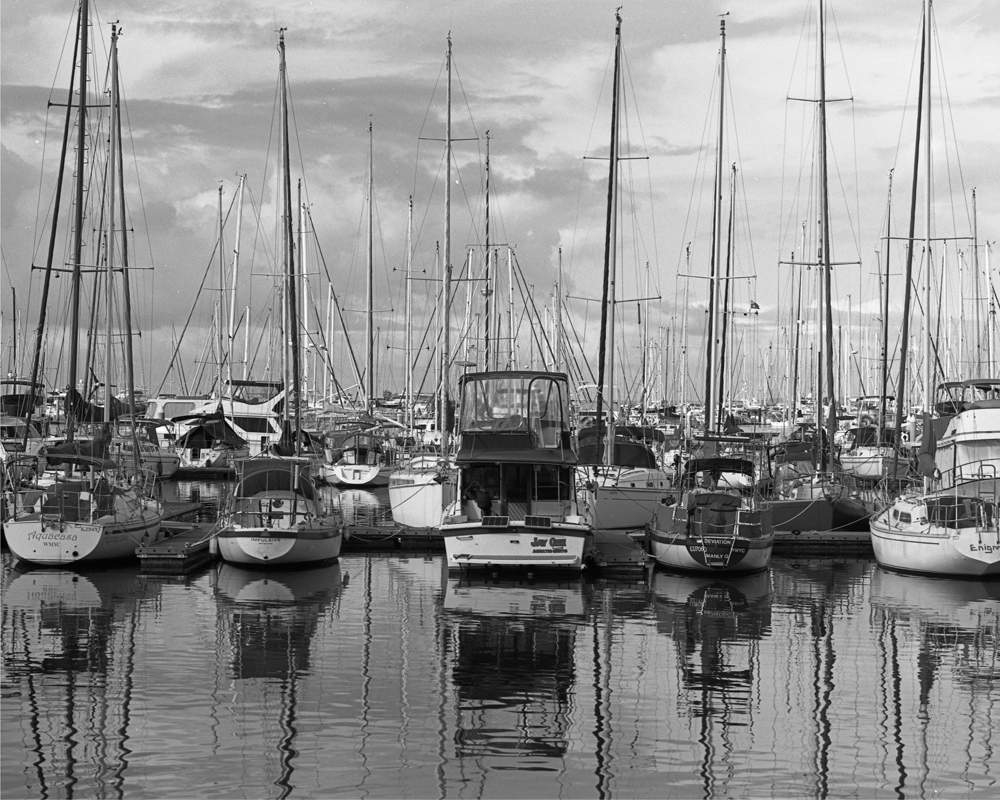 manly Boats 120 film small.jpg